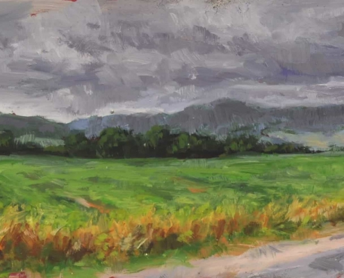 Kim Aerts oil painting - Farm and field near Norton - 3x12 inches