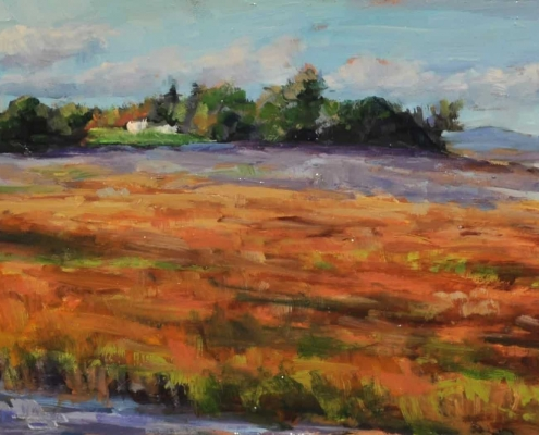 Kim Aerts oil painting - House Near Blomidon - 4x12 inches